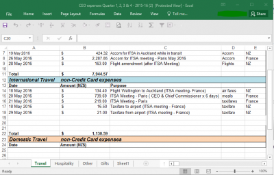 Example image of the expenses spreadsheet