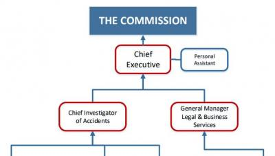 Top section of TAIC organisation chart