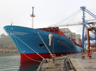 The Leda Maersk at dock in Port Chalmers