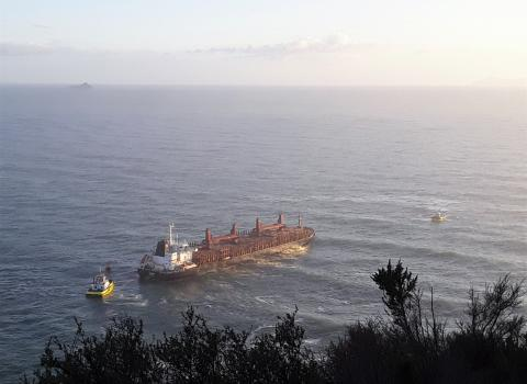 The Funing being assisted by Port of Tauranga tugs, off Mauao-Mt Maunganui. Photo_Stu James via SunLive
